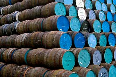 Singleton hầm-ủ-rượu