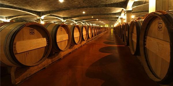 hầm-ủ-vang-chateau-les-martineaux