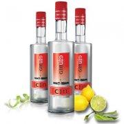 Gin Istanbul