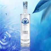 BLUEBIRD VODKA