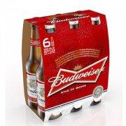 Lốc 6 Chai Budweiser 355ml