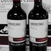 AMOR DE CHILE