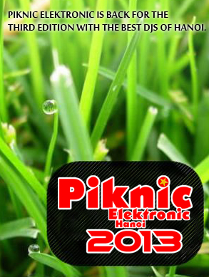 piknic electronic2013